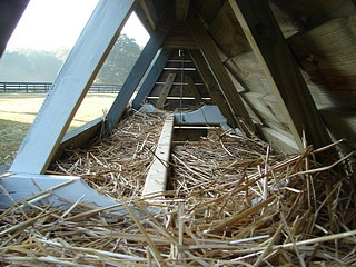 Chicken Nesting Box in Chicken Ark