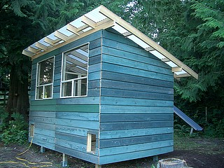 A nice sized chicken coop for a bigger flock.