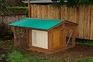 A well designed nice looking coop.