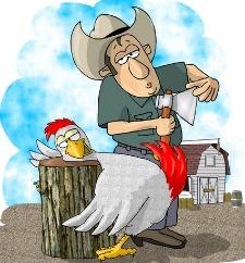 Kill a chicken