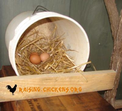 5 gallon nesting box