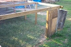 back yard chickens chicken pen