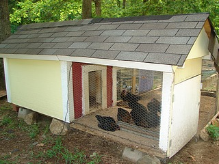 A pretty little chicken coop.